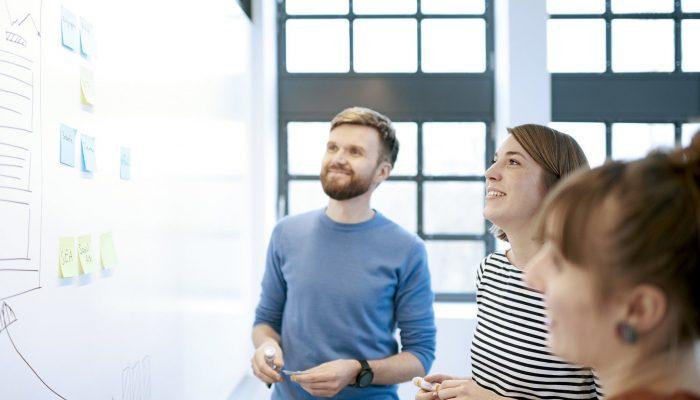 Projektmanager und Kollegen aus dem Online Marketing besprechen aktuelle Projekte - Windrich & Sörgel