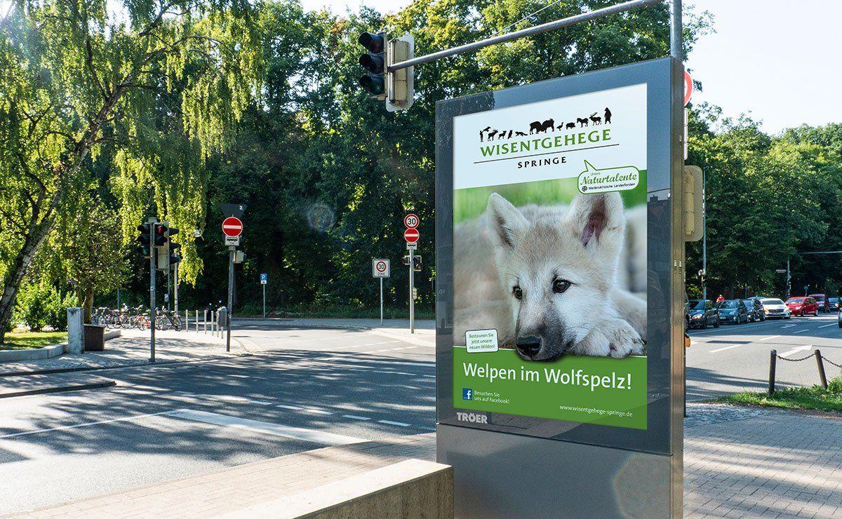 Wisentgehege Citylight Plakat Zoo