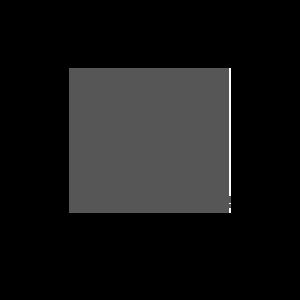 Logo VW Nutzfahrzeuge neu