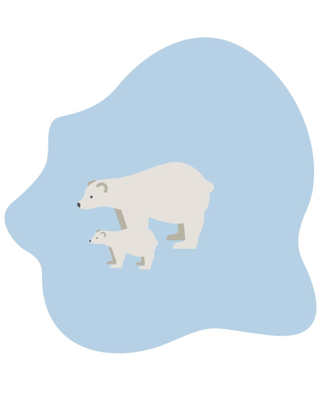GVH Geschäftsbericht Illustration Eisbär