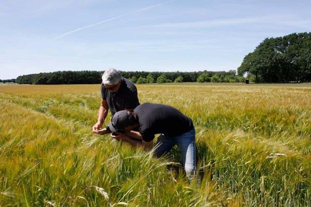 Fotografen auf dem Feld für Detailaufnahmen - Windrich & Sörgel