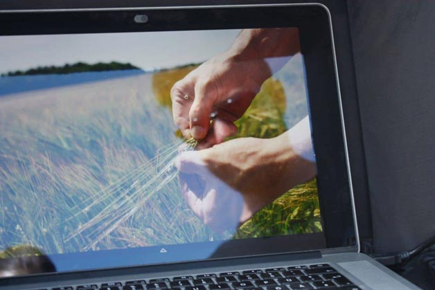 Detailaufnahme Hände, zu sehen auf einem Laptop - Windrich & Sörgel